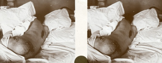 06-MedicalStudy1.jpg